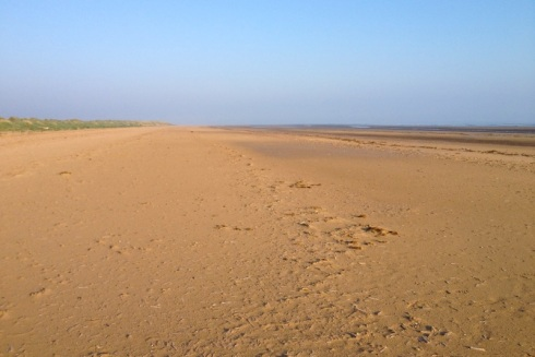 Wide sandy beach at low tide. © Gyorgy Szimuly