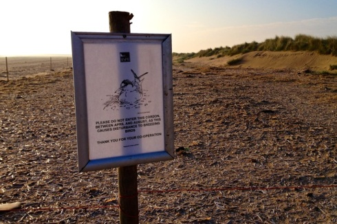 Warning sign for beach nesting birds. © Gyorgy Szimuly