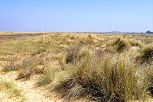 Higher and wider sand dunes of Holme. © Gyorgy Szimuly